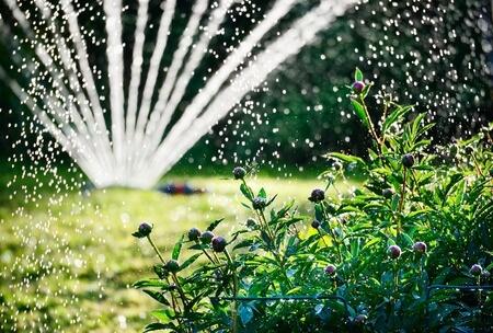 Gartenpflege und Landschaftspflege
